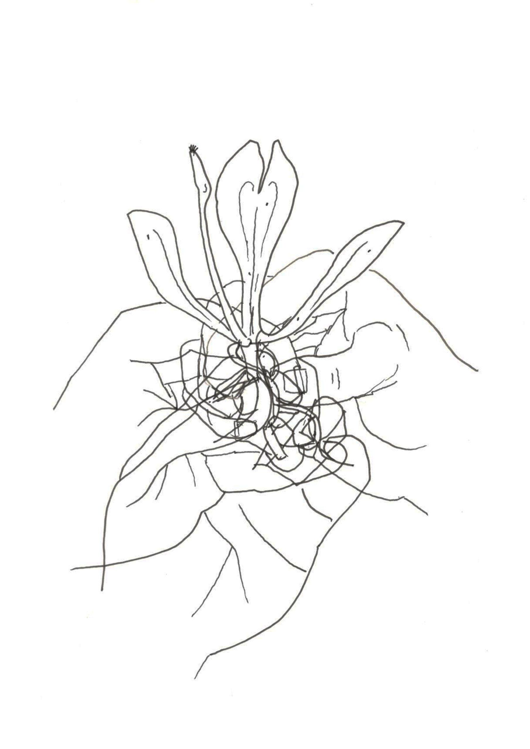 Hand_website_illustrations_5